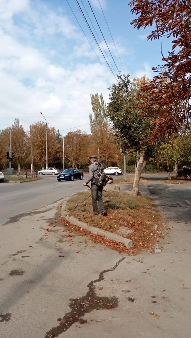 МКУ «Благоустройство» отчиталось о покосе растительности в городе Таганроге