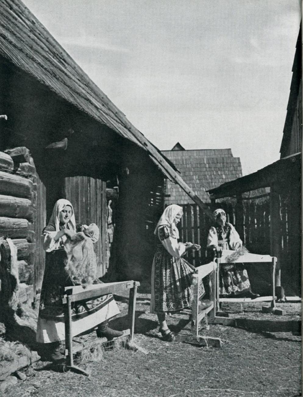 Чешские переселенцы, начало 20 в.
